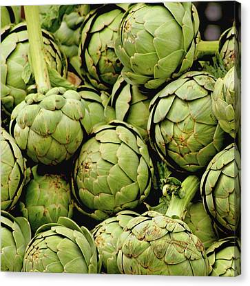 Green Artichokes Canvas Print by Art Block Collections