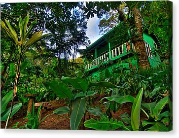 Green Costa Rica Paradise Canvas Print by Andres Leon