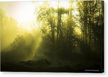 Canvas Print featuring the photograph Green Dawn by Phil Abrams
