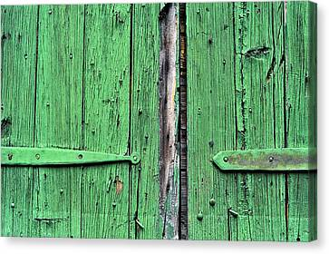 Green Door Canvas Print by Steve Archbold