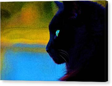 Canvas Print featuring the photograph Green Eye by Pamela Blizzard