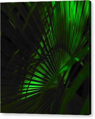 Green Fan Canvas Print by Silke Brubaker
