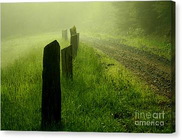 Green Fog Canvas Print
