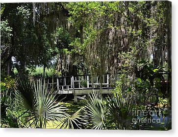 Green Gardens At Magnolia Plantation Canvas Print