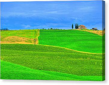 Green Green Grass Of Home Canvas Print by Midori Chan