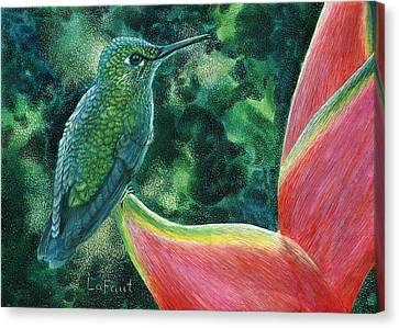 Green Hummingbird Canvas Print by Sandra LaFaut
