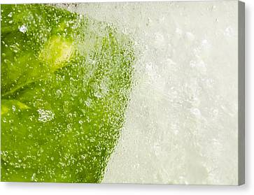 Green Ice Canvas Print by Ahmed Tarek Shaffik