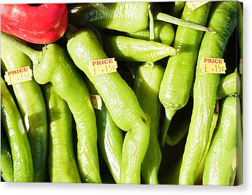 Green Jalpeno Peppers Canvas Print by Tom Gowanlock