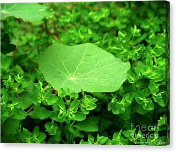 Green Canvas Print by Karam Halim