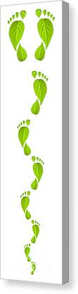 Green Leaf Footprint Canvas Print