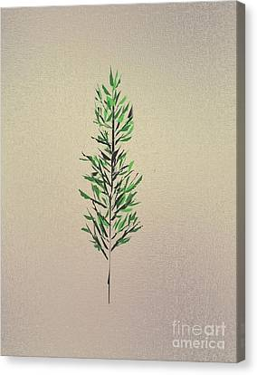 Green Leaves Canvas Print by John Krakora