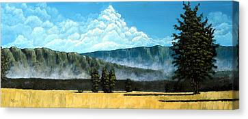 Clearing Canvas Print - Green Mist by Michael Dillon