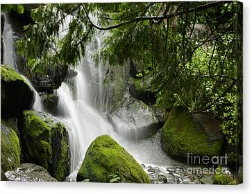 Green Moss Waterfall Canvas Print