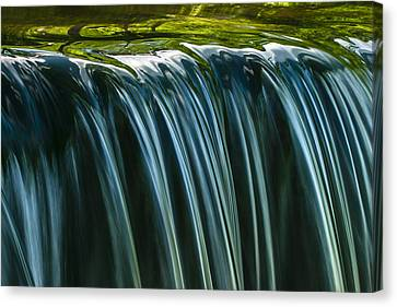 Canvas Print featuring the photograph Green by Muhie Kanawati