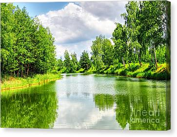 Canvas Print featuring the photograph Green Nature by Boon Mee