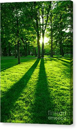 Green Park Canvas Print