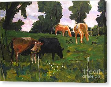 Green Pastures Roann Canvas Print by Charlie Spear