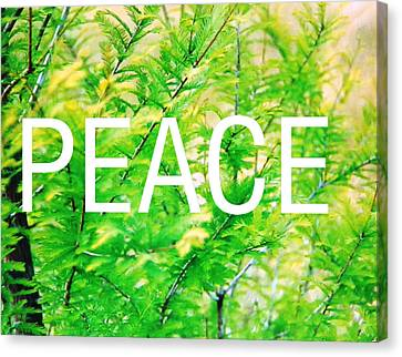 Green Peace Canvas Print by Belinda Lee