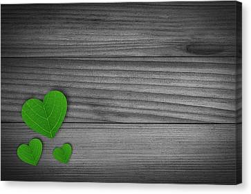 Green Pedal Shaped Hearts Canvas Print