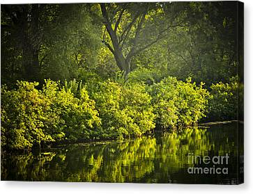 Green Reflections In Water Canvas Print by Elena Elisseeva