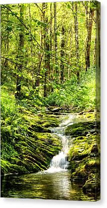 Green River No2 Canvas Print by Weston Westmoreland