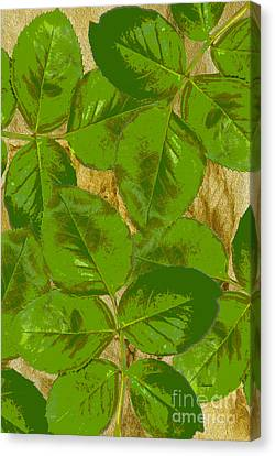 Green Rose Clippings 1 Canvas Print