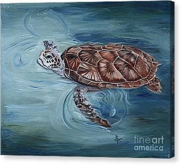 Green Sea Turtle Canvas Print by Brenda Thour