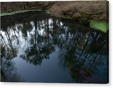 Canvas Print featuring the photograph Green Sink Reflection by Paul Rebmann