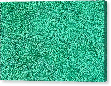 Green Towel Canvas Print by Tom Gowanlock