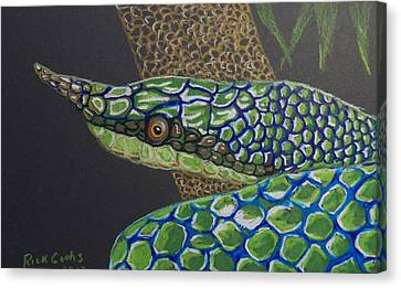 Whip-snake Canvas Print - Green Tree Snake by Richard Goohs