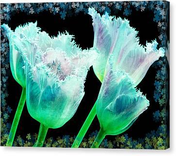 Green Tulip Glow Canvas Print by Debra  Miller