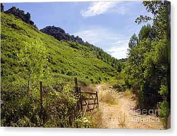 Portal Canvas Print - Green Valley by Carlos Caetano