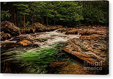 Green Water  Canvas Print