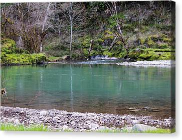 Green Waters  Canvas Print by Tim Rice