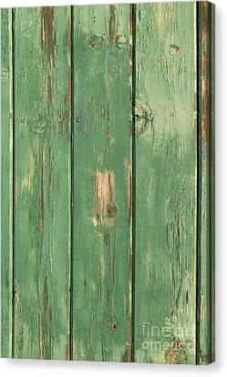 Canvas Print - Green Wood Texture by Sheri Van Wert