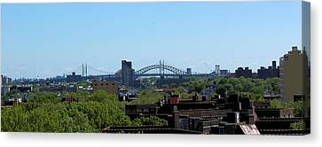 Greener New York Canvas Print by Suzanne Perry