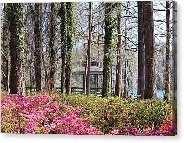 Greenfield Park And Lake Canvas Print by Cynthia Guinn