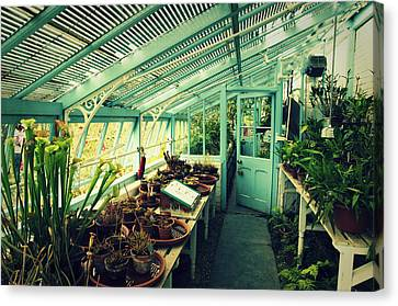 Greenhouse Of Charles Darwin Canvas Print by Chevy Fleet