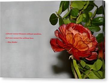 Greeting Of Love Canvas Print by Sonali Gangane