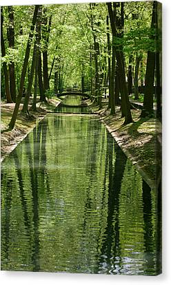 Gren Green Canvas Print by Iryna Soltyska