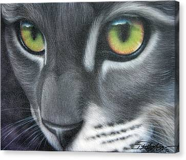 Grey Lady Canvas Print