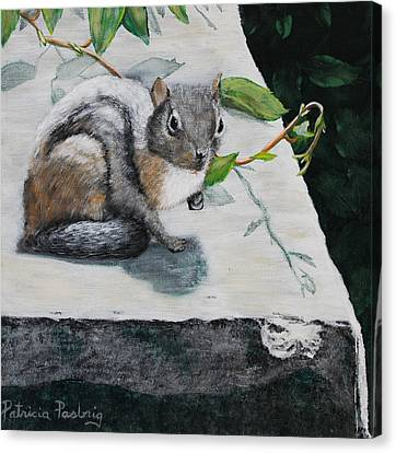 Chipmunk Canvas Print by Patricia Pasbrig
