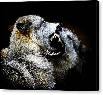 Grey Wolf Fight Canvas Print by Steve McKinzie