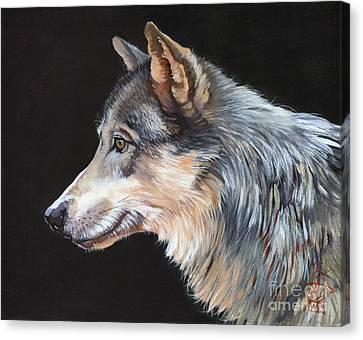 Indigenous Wildlife Canvas Print - Grey Wolf by J W Baker