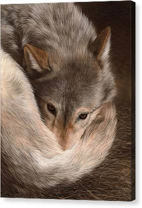 Grey Wolf Painting Canvas Print