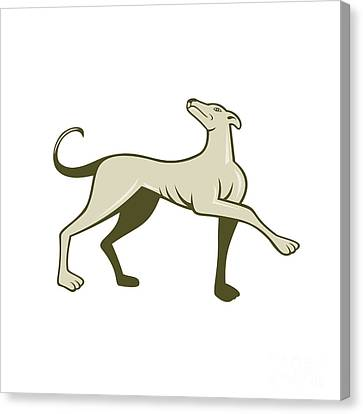 Greyhound Dog Marching Looking Up Cartoon Canvas Print