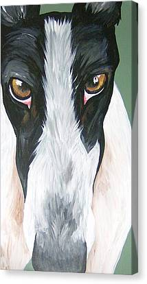 Greyhound Eyes Canvas Print