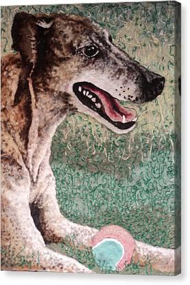 Greyhound Canvas Print - Greyhound by Heidi Hooper