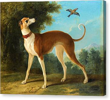 Greyhound In A Landscape Canvas Print by Jean-Baptiste Oudry