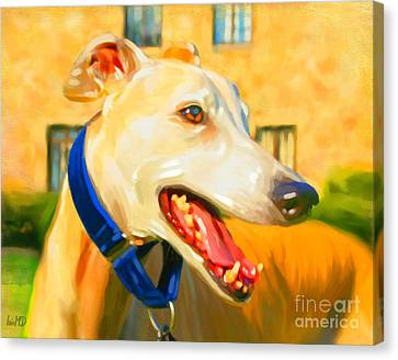 Greyhound Painting Canvas Print by Iain McDonald